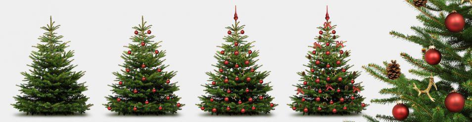 Kurzanleitung zum SChmücken des Weihnachtsbaumes