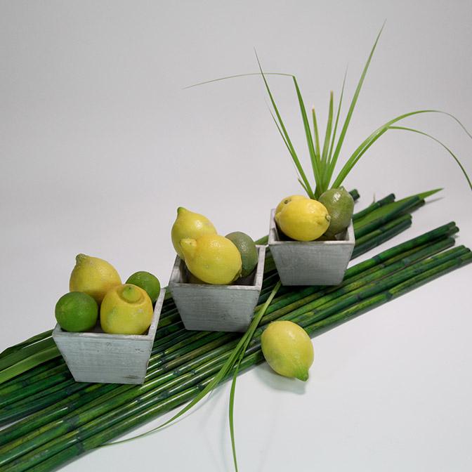 Drei quadratische, graue Holz-Schalen im shabby chic. Dekoriert mit Zitronen, Limetten, Gräsern und grünen Bambus-Stangen.