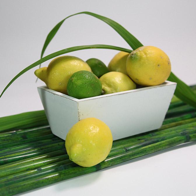 Weiße, rechteckige Holz-Schale im shabby chic. Dekoriert mit Zitronen, Schilf-Gras und grünen Bambus-Stäben.