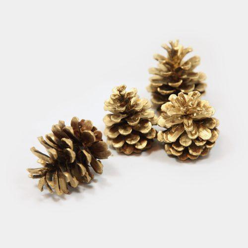 goldenen Kiefern-Zapfen