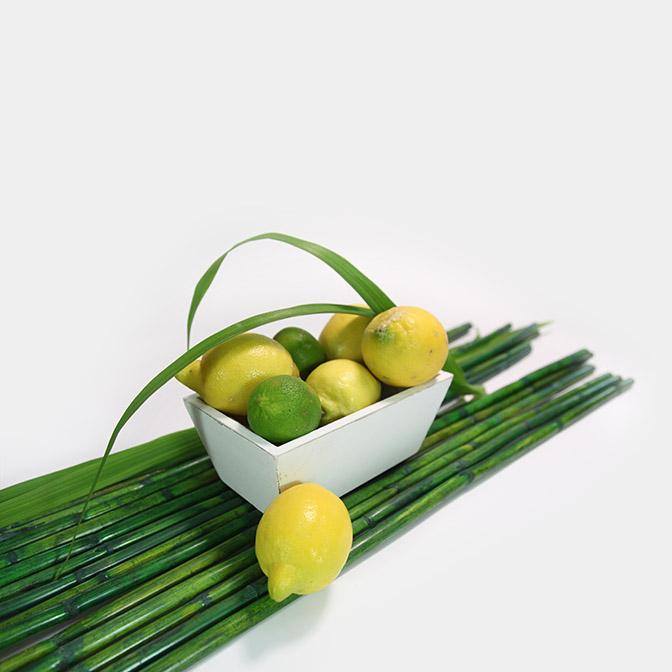 Grüne, lange stabile Bambus-Stangen. Hier wurden sie unter einer weißen, rechteckigen Holz-Schale im shabby look dekoriert. Diese ist mit Zitronen und Limetten befüllt. Um das grün der Bambusstäbe nochmals aufzunehmen wurde weiter etwas Schilfgras integriert.
