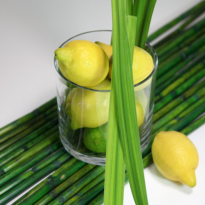 Grüne, lange Bambusstangen sehr vielseitig einsetzbar. Bei diesem Deko-Beispiel wurde auf ihnen eine Glasvase mit Zitronen, Limetten und Schilf-Gras dekoriert.