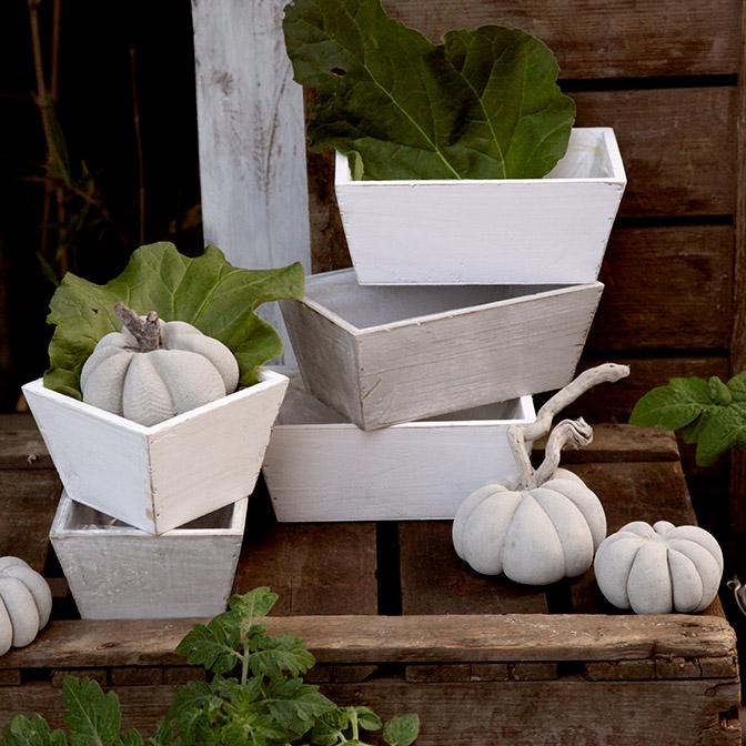 Weiße, rechteckige Holz-Schale mit handgefertigten Beton-Kürbissen