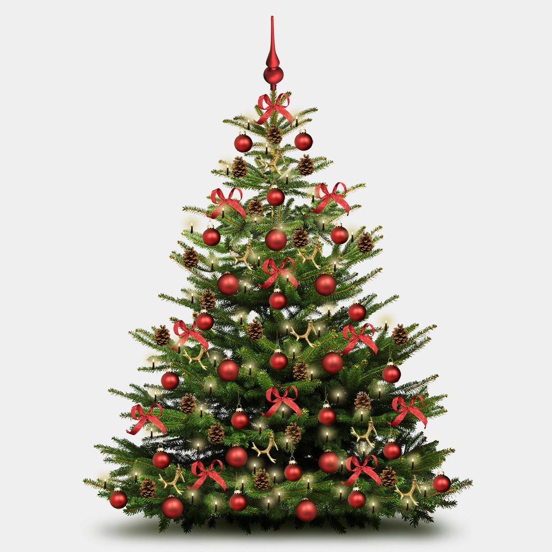 Weihnachtsbaum Deko-Set \